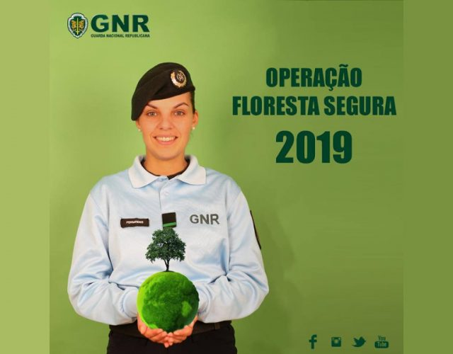 Operação Floresta Segura 2019